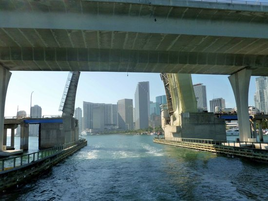 Miami Aqua Tours: From the boat 2