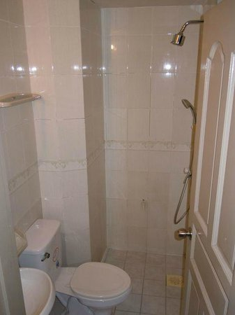 Luckyhiya Hotel: Shower (which we could not use due to no water). There is no separation from rest of the bathroo
