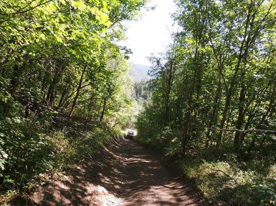 South Forty RV Park: Paiute Trail