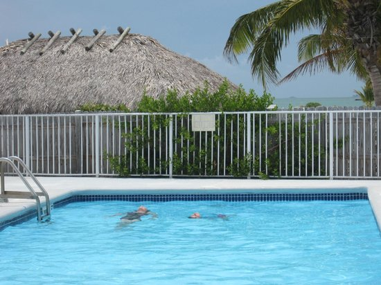 Key Colony Beach Motel: Pool was always quiet and warm and right on the beach!