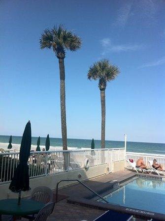 Atlantic Ocean Palm Inn : view of pool and beach