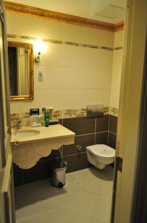 Maywood Hotel : Baño