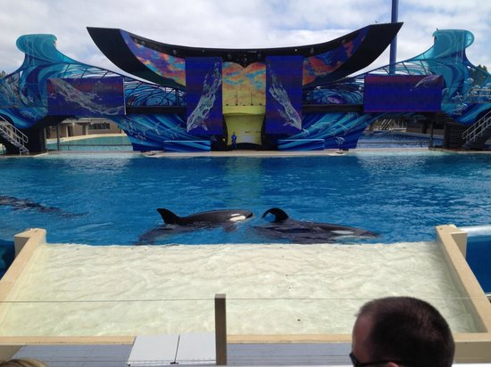 Homewood Suites by Hilton San Diego Airport - Liberty Station: Sea World