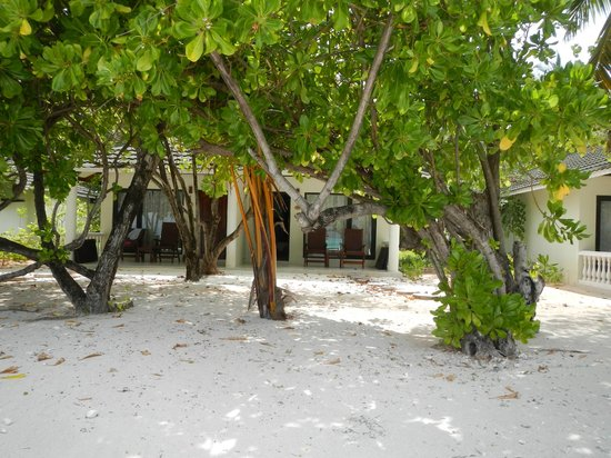 Paradise Island Resort & Spa: other side of superior beach bungalow