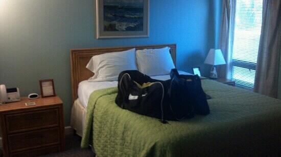 Atlantic Towers: room 202 bed room