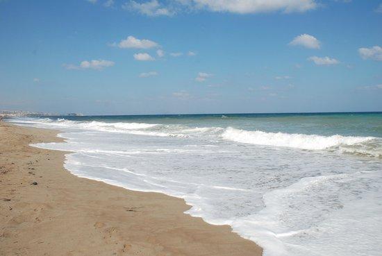 Minos Mare Royal: Приотельный пляж