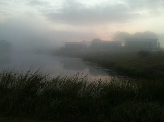 Tonic Hotel: Morning mist