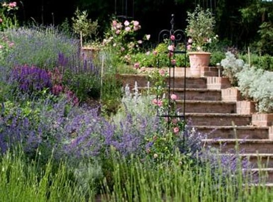 Burpham Country House: garden steps