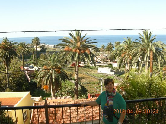 Hotel Jardin Concha: Vista del palmeral y el mar desde habitación.