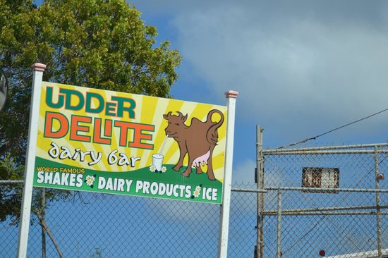Famous Delite: Udder Delite sign by the road