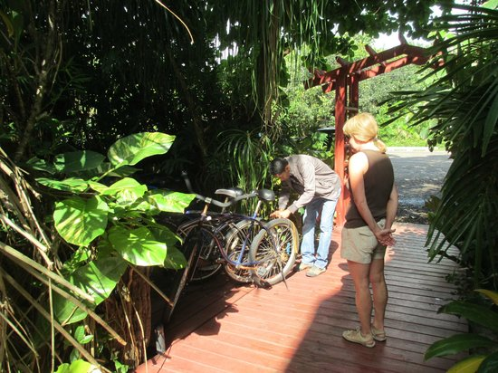 Singing Sands Inn: borrowing the bikes to ride to Placencia