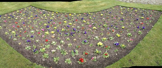 Grosvenor Museum: Flower bed