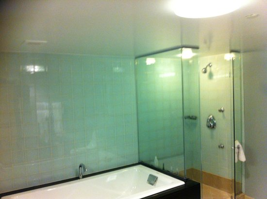 The Hilton Club - New York: bathroom1