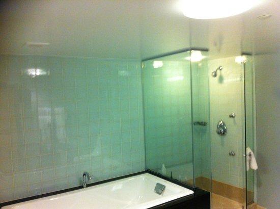 هيلتون كلوب نيو يورك: bathroom1