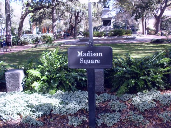 Savannah College of Art and Design: SCAD at Bull Street and Madison Square