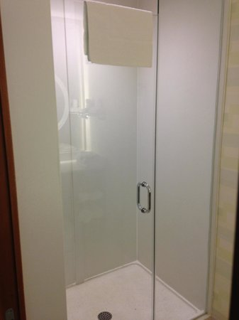 SpringHill Suites Cincinnati Airport South: Shower stall