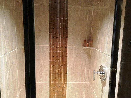 Turtle Creek Casino & Hotel: Shower