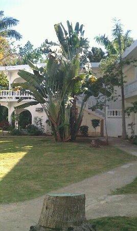 The Gardenia Resort : Outside of my room