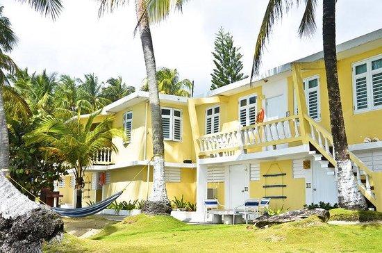 Caribe Playa Beach Hotel: Amapola Building