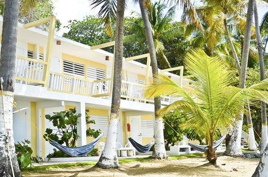 Caribe Playa Beach Hotel : Mamey Building