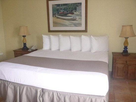 Caribe Playa Beach Hotel