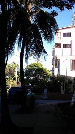 Sheylla's Place: Llegando a Sheylla´s, un coco en la vereda me recibió