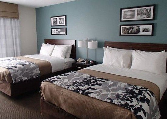 Sleep Inn & Suites : Guest Room