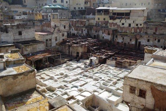 Moulay Abdellah Quarter: La tannerie a ciel ouvert et les peaux qui sèchent sur les murs et les toits