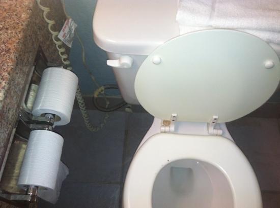 Knights Inn & Suites Near University of Richmond: bathroom almost made me vomit