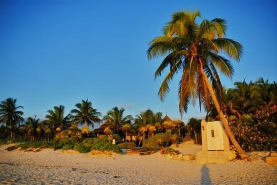 Playa Esperanza: la Puerta y la Palmera