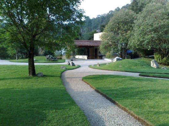 Hotel Bosques del Sol suites: JARDIN CENTRAL