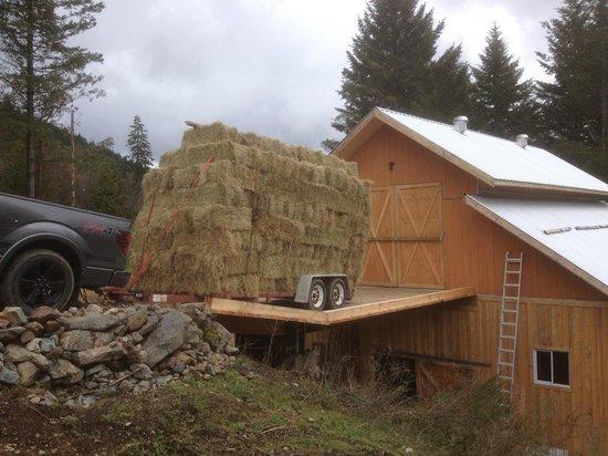 Prancing Horse Retreat: Hay delivery