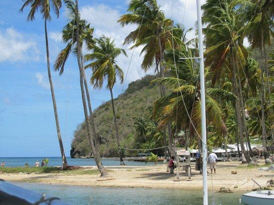 Saluna Excursions & Watersports: Marigot Bay