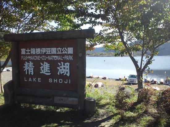 Lake Shoji : 湖畔