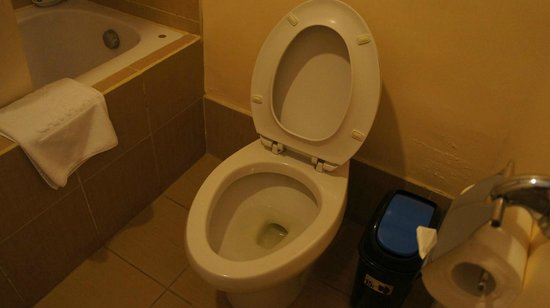 Camayan Beach Resort and Hotel: Toilet