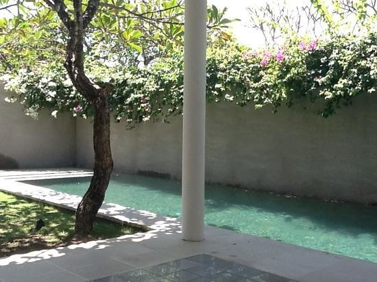 Uma Sapna: Private pool in Villa 'Nias'