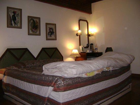 Hotel Snowcrests Manor: Deluxe Room