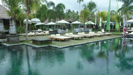 Baliwood Resort: Une des piscines