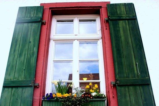 Bierhelderhof: Beautiful window panes