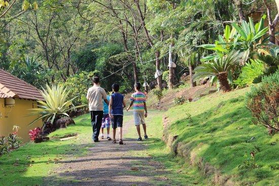 Neelambari Resort & Spa: walking path