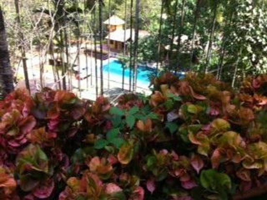 Neelambari Resort & Spa: swimming pool from the top