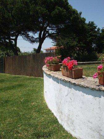 Villas Praia Grande: Garden