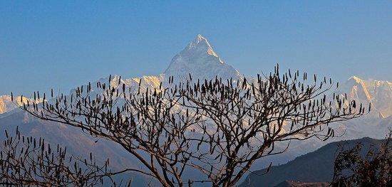 Shangri-La Village Pokhara: View from Sarangot