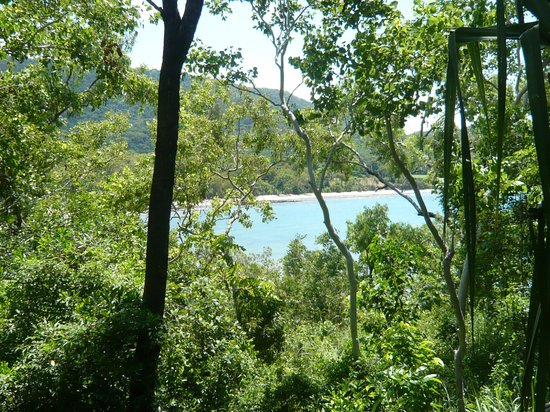 Thala Beach Nature Reserve: View from chalet
