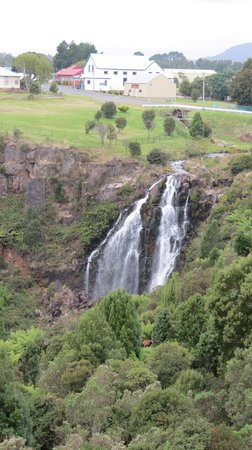 Bischoff Hotel: View of the Waterfall