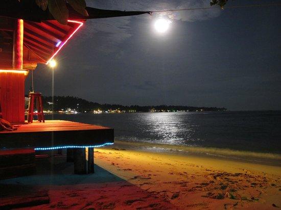 Kingfisher Hotel: Moonölight at the bar