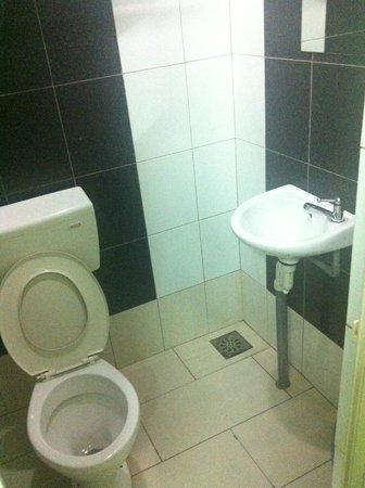 Panorama Inn Hotel: Simple bathroom.