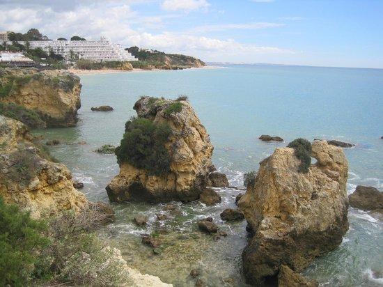 Auramar Beach Resort : Beach with rocks