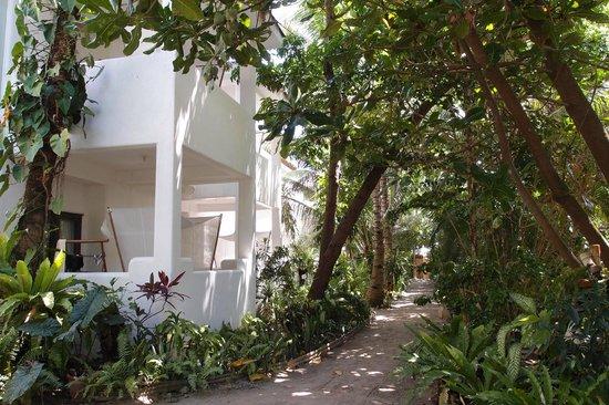 Boracay Beach Resort: The Boracay Beach Resort