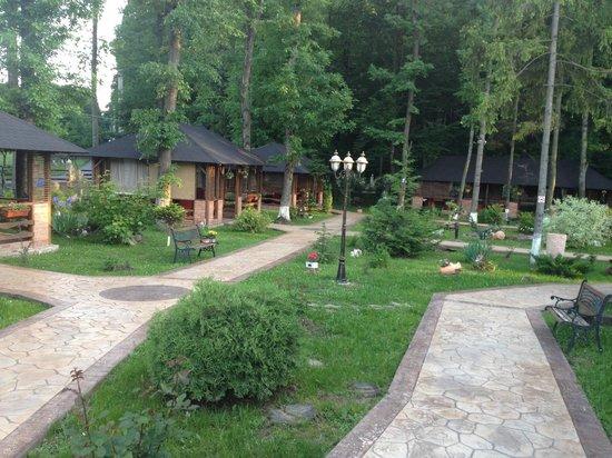 Hotel Caprioara: garden